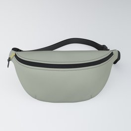 Sage x Simple Color Fanny Pack
