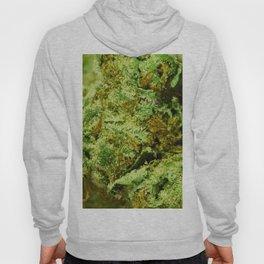 Leafy Hoody