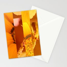 crash_ 21 Stationery Cards