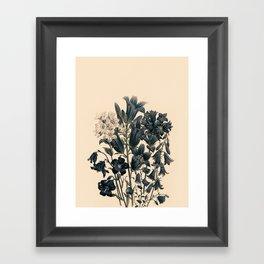 Flowers near me 11 Framed Art Print