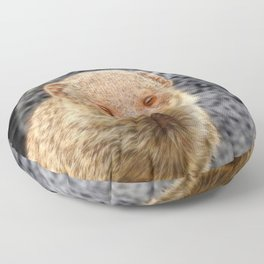 Mongoose Floor Pillow