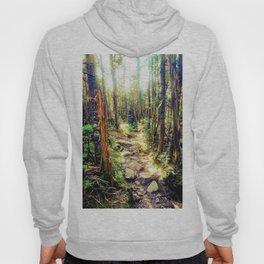 Zealand Forest Hoody