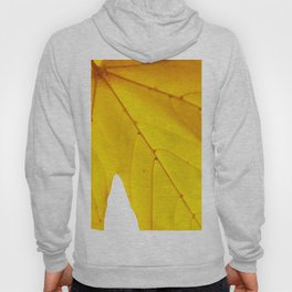 Yellow maple leaf. Hoody