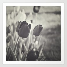 When Spring Was Here B/W Art Print