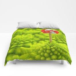 Romanesco Lollipop Comforters