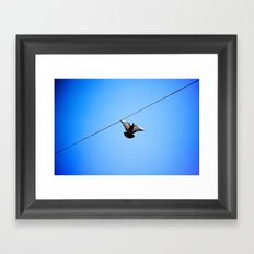 with wings wide open Framed Art Print