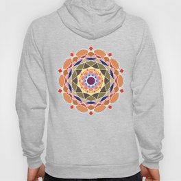 Complex Detailed Abstract Mandala Art Hoody