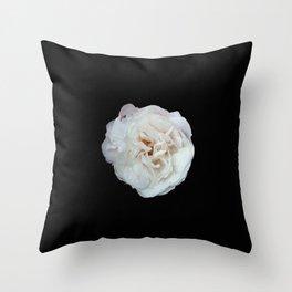 white rose 3 Throw Pillow