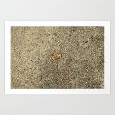 Forgotten Autumn  Art Print
