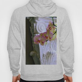 An Order Of Corinthian For Here Hoody