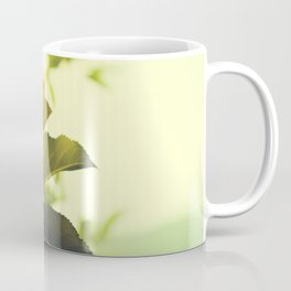 Morning Light Shining Through Branches Of Leaves Nature Photography Coffee Mug
