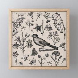 The Natural World Framed Mini Art Print