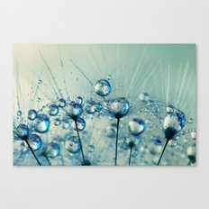 A Shower of Blue Dandy Drops Canvas Print