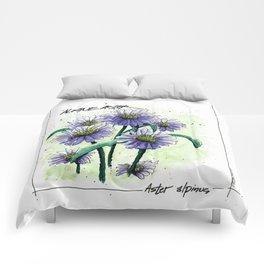 Alpine Aster Comforters