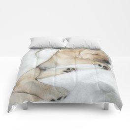 Sleeping Golden labrador puppy Comforters
