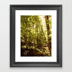 Lit Up Framed Art Print