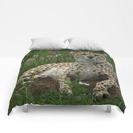 Cheetah Amidst Spring Flowers Comforters