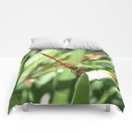 Red Skimmer or Firecracker Dragonfly Comforters