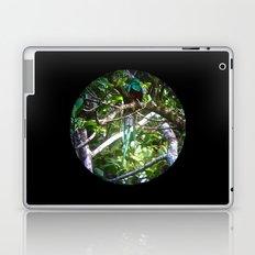 Quetzal Medallion Laptop & iPad Skin