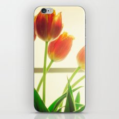 Effluence iPhone & iPod Skin