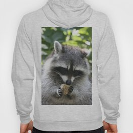 Raccoon_20150115_by_JAMFoto Hoody