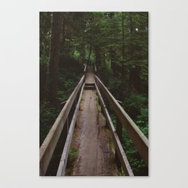 Rainforest Bridge Canvas Print