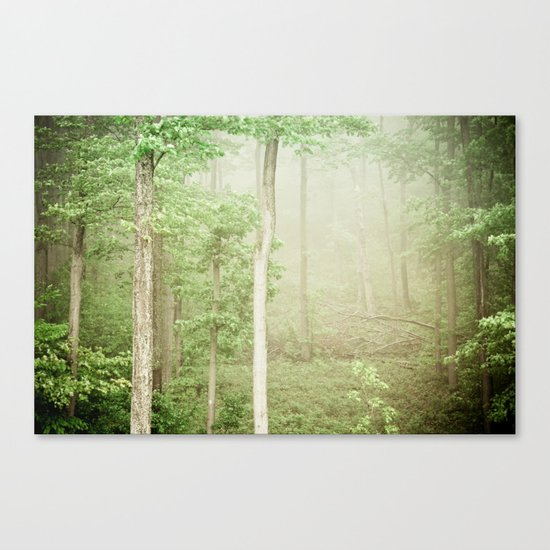 The Marvel of Ordinary Things Canvas Print