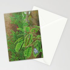 A Day of Forest (3). (Observe the tree) Stationery Cards
