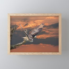 owl at sunset Framed Mini Art Print