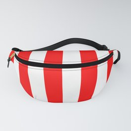 Big Top Stripes Fanny Pack