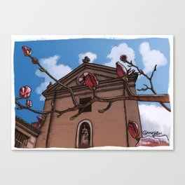 Magnolia (color) Canvas Print