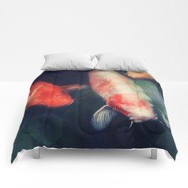 Salutations Comforters