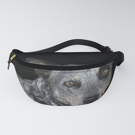 Australian Cattle Dog Fanny Pack