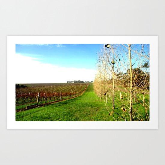 Scotchmans Hill Winery Art Print