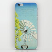 american beauty iPhone & iPod Skins featuring American Beauty Vol 20 by Farmhouse Chic