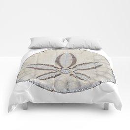sandollar Comforters