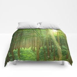 Forest In Morning Light Comforters