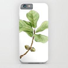 Water Oak iPhone 6s Slim Case