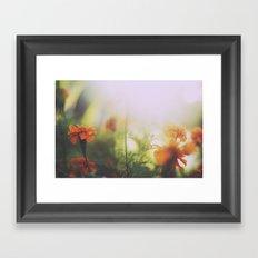 Marigolds in Ubud Framed Art Print