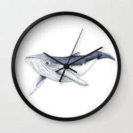 Baby humpback whale (Megaptera novaeangliae) Wall Clock