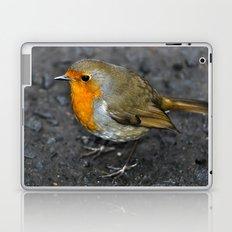 Robin Red Breast Laptop & iPad Skin