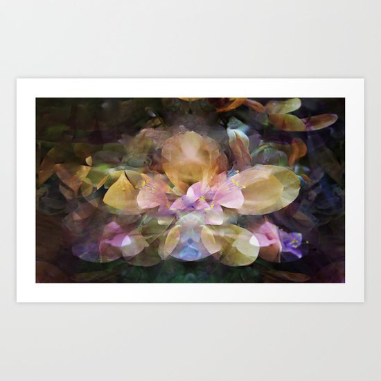 In a Hidden Place Art Print