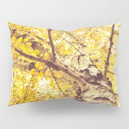 White Birch in the Fall Pillow Sham