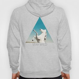 Guardian of the Plains Hoody