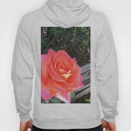 Rose On a fence Hoody
