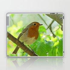 Robin in the bushes Laptop & iPad Skin