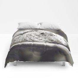 Southeastern Girdled Lizard Comforters