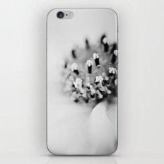 Unheard Echoes iPhone & iPod Skin