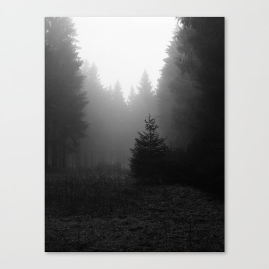 even more trees. Canvas Print