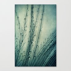 Moody Blues Feather Drops Canvas Print